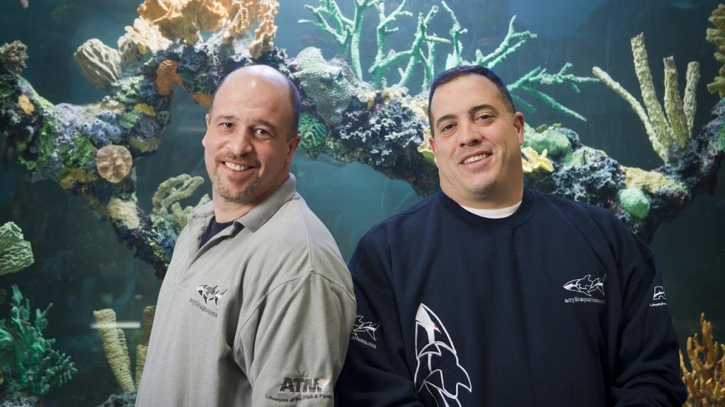 die aquarium profis dvd